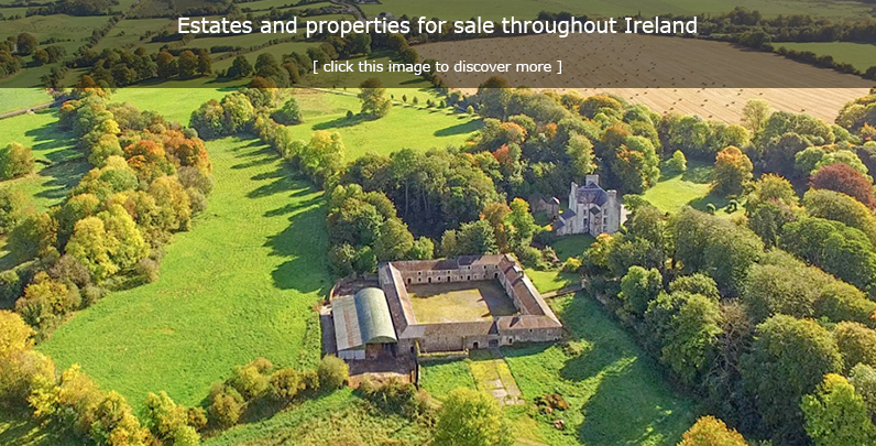 Properties for sale in Ireland